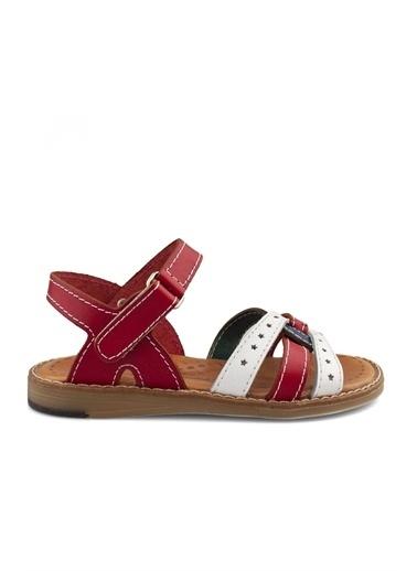 Cici Bebe Ayakkabı Kız Çocuk Sandalet Kırmızı